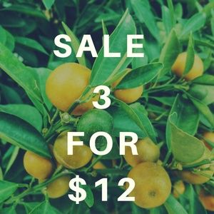 Other - SALE 3 For $12
